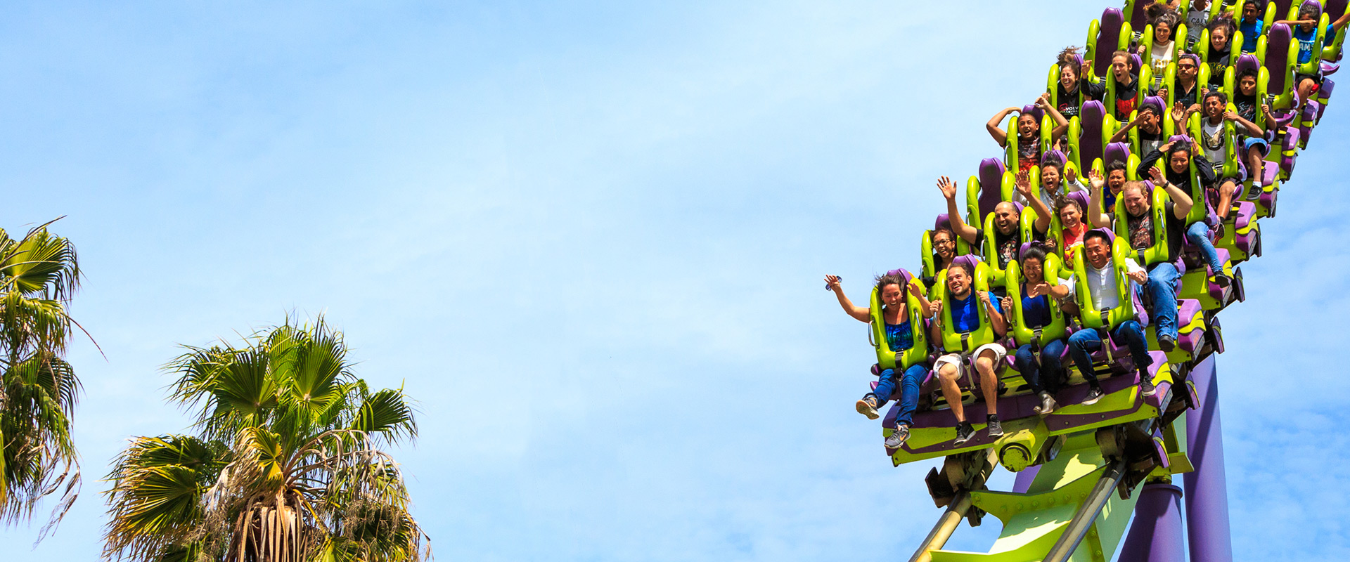 people enjoying customer experience on roller coaster